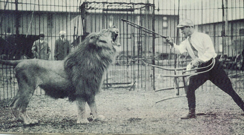 Recording Of The Lion Roar For Introduction Films Photo Jpg 400x300 Mgm
